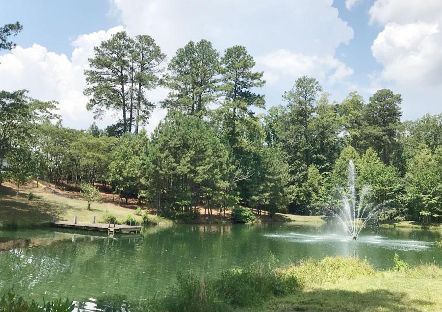 small pond in Weldon Ridge; large lots in Weldon Ridge; community with swimming pool;