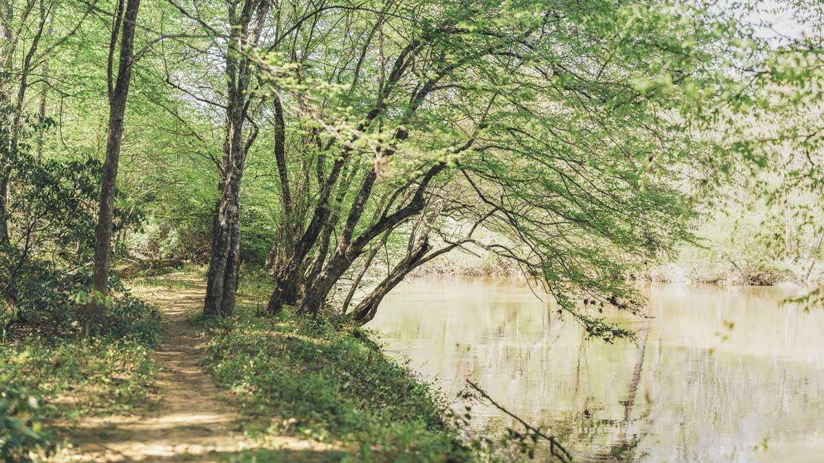 trail along Eno River in Durham NC